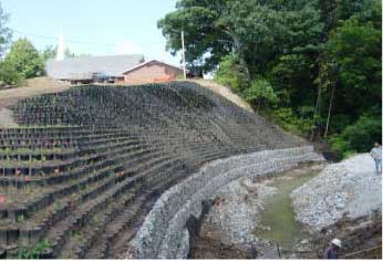 Stream Stabilization Photo'